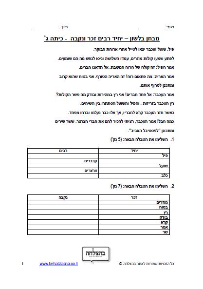 מבחן בלשון לכיתה ג - יחיד רבים , זכר נקבה