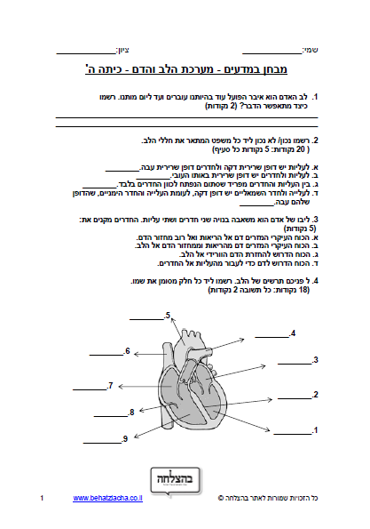 מבחן במדעים לכיתה ה - מערכת הלב והדם
