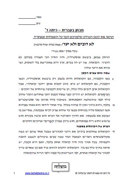 מבחן בעברית לכיתה ג - כיתה ג - טקסט מידעי - לא דובים ולא יער; רמה מתקדמת כיתה ג, מבחן של כיתה ד